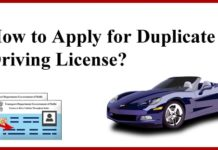 How to Apply for Duplicate Driving License