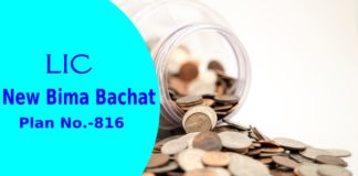 lic new bima bachat plan 816