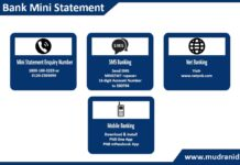 How to Get PNB Bank Mini Statement Mini statement Enquiry Number, Mobile Banking, Net banking